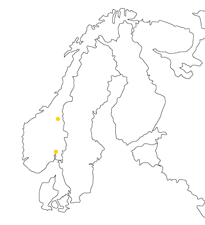 Levanto Norge AS kontor